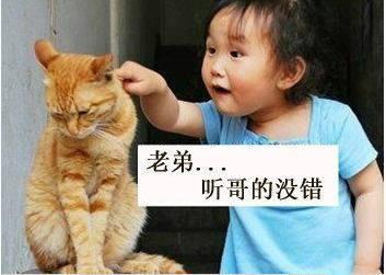 开心大师搞笑段子笑话图片:喂,老公,你小情人找
