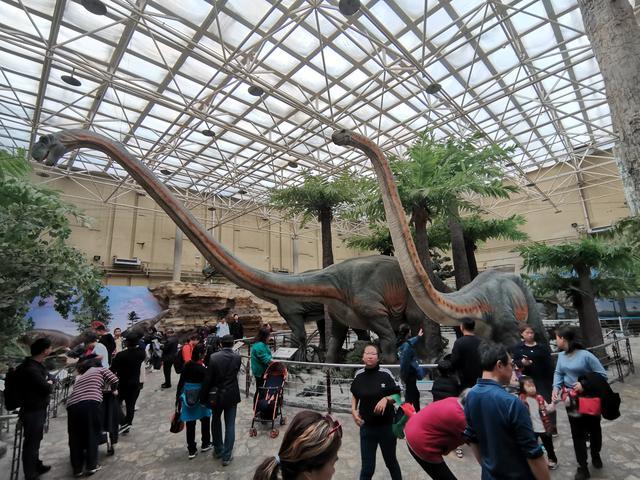 """免费-免费yoqq北京这个免费博物馆,藏了个""""侏罗纪公园"""",孩子们很...yoqq资源(11)"""