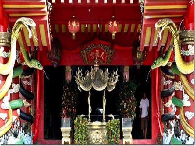 天下上最恐怖的寺庙,是寺庙照样蛇窝(leedjobs.com)