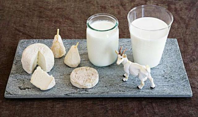 喝羊奶对人体的好处!