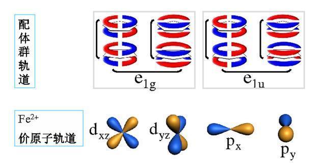 分子轨道原来简单初中生也看得懂的对百度初中生图片搜索干图片