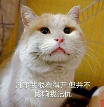 三个字,王者!图:我头像表情荣耀里面最搞笑的王社会图片的可爱就是图片