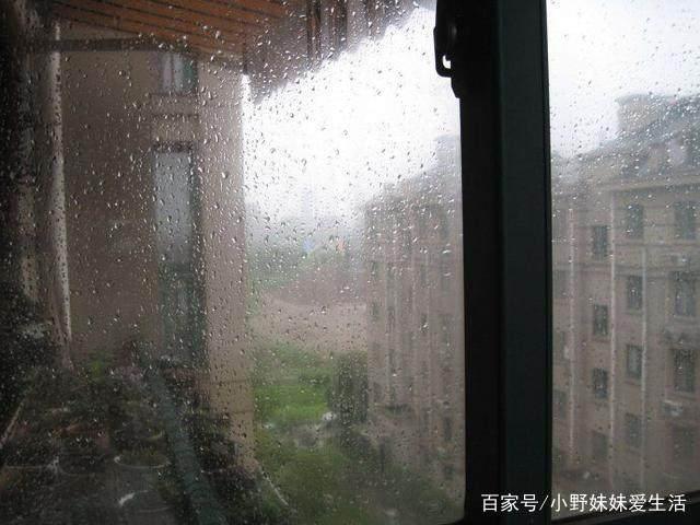湿热的梅雨季来了,教你几招轻松防潮去湿