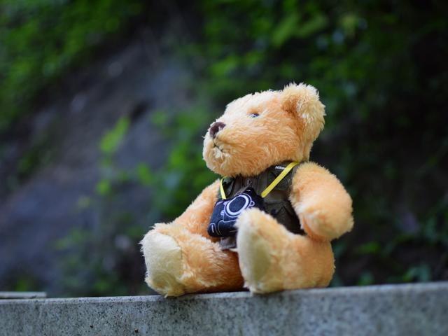 「公仔奢侈品排行榜」毛绒熊