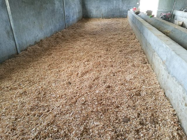 发酵床生态养殖
